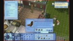 Les Sims 3 Ambitions